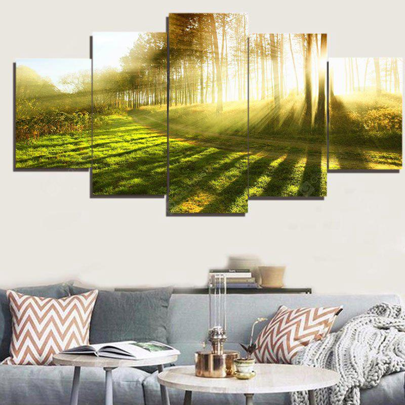 Sunlight Forest Path Way Print Decorative Canvas Paintings