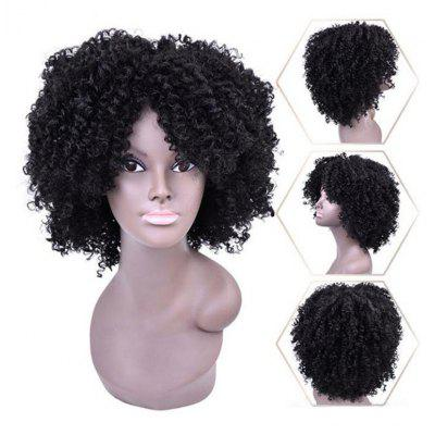 Short Side Bang Shaggy Afro Kinky Curly Synthetic Wig