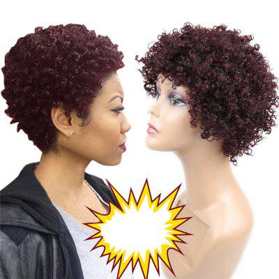 Buy WINE RED Short Side Bang Fluffy Afro Curly Synthetic Wig for $21.43 in GearBest store