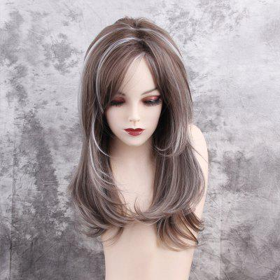 Long Side Bang Layered Highlighted Straight Synthetic Wig