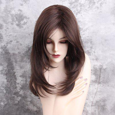 Long Inclined Bang Layered Straight Synthetic Wig