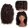 Long Free Part Shaggy Loose Curly Synthetic Lace Front Wig - DEEP BROWN
