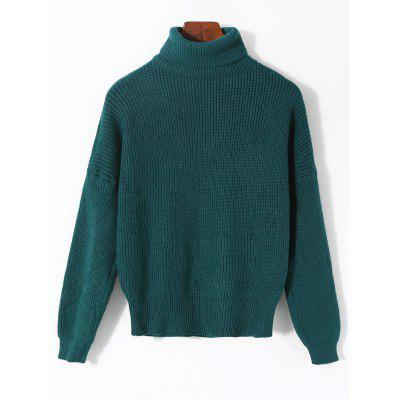 Plain Ribbed Turtleneck Sweater