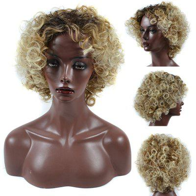 Short Side Bang Shaggy Curly Colormix Synthetic Wig