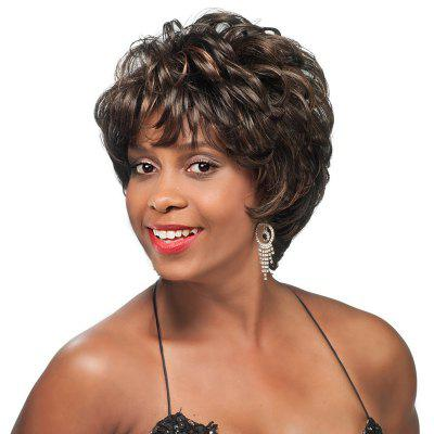 Short Inclined Bang Colormix Layered Slightly Curly Synthetic Wig