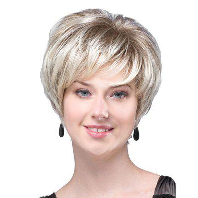 Short Inclined Bang Colormix Fluffy Layered Straight Synthetic Wig