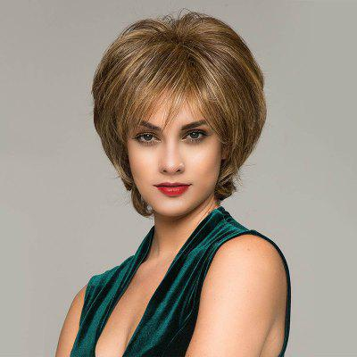 Short Side Bang Fluffy Natural Straight Colormix Synthetic Wig