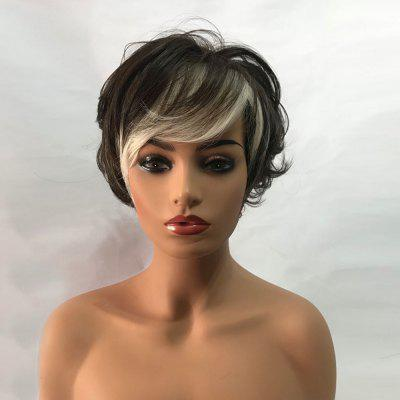 Short Side Bang Colormix Layered Fluffy Slightly Curly Synthetic Wig