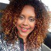 Long Side Bang Ombre Shaggy Afro Kinky Curly Synthetic Wig - Цветной