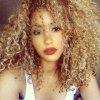 Long Side Bang Colormix Fluffy Afro Kinky Curly Synthetic Wig - COLORMIX