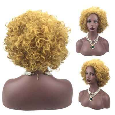 Medium Inclined Bang Fluffy Afro Curly Synthetic Wig