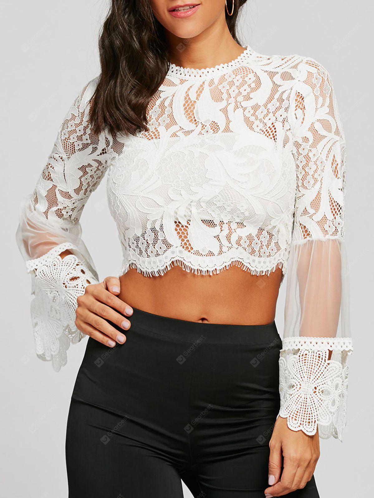 Long Sleeve Scalloped Lace Cropped Top