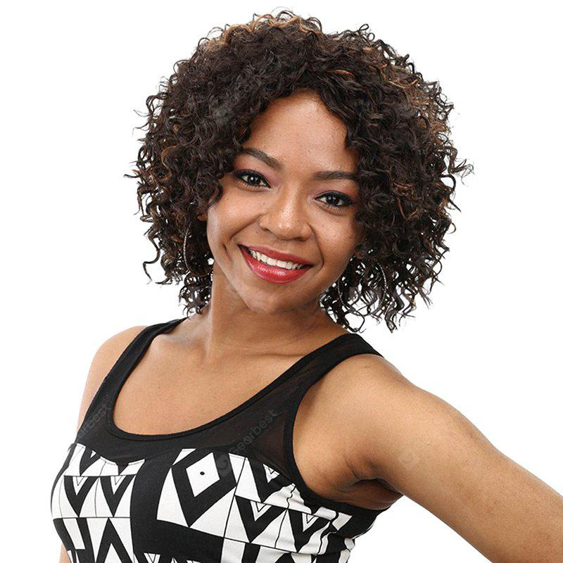 Short Side Bang Fluffy Afro Kinky Curly Colormix Synthetic Wig