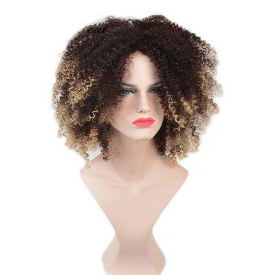 Medium Shaggy Afro Kinky Curly Colormix Synthetic Wig