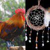Feather Vine Circle Shell Hanging Handmade Dreamcatcher - COLORMIX