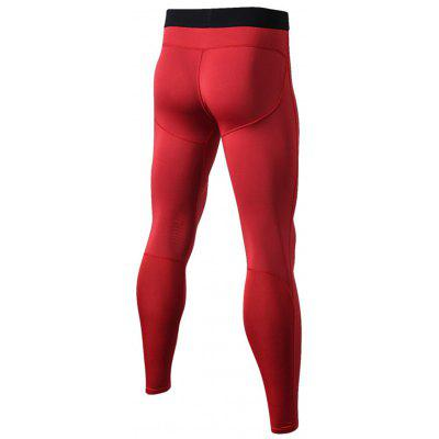 Panel Design Stretchy Quick Dry Gym PantsSport Clothing<br>Panel Design Stretchy Quick Dry Gym Pants<br><br>Elasticity: Elastic<br>Material: Polyester, Spandex<br>Package Contents: 1 x Pants<br>Pattern Type: Solid<br>Type: Pants<br>Weight: 0.2200kg