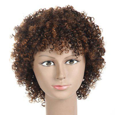 Inclined Bang Short Fluffy Kinky Curly Synthetic Wig