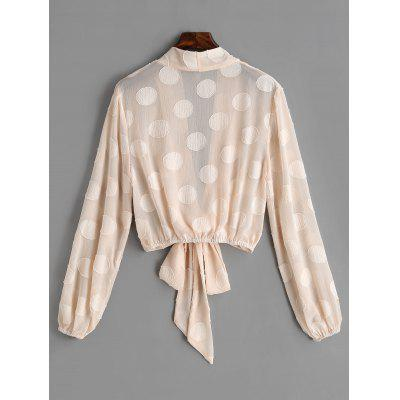 Textured Tied See Through BlouseBlouses<br>Textured Tied See Through Blouse<br><br>Collar: Plunging Neck<br>Embellishment: Tie<br>Material: Cotton, Polyester<br>Occasion: Casual<br>Package Contents: 1 x Blouse<br>Pattern Type: Solid<br>Seasons: Autumn,Spring<br>Shirt Length: Short<br>Sleeve Length: Full<br>Style: Fashion<br>Weight: 0.2250kg