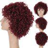 Short Oblique Fringe Fluffy Curly Synthetic Wig - WINE RED