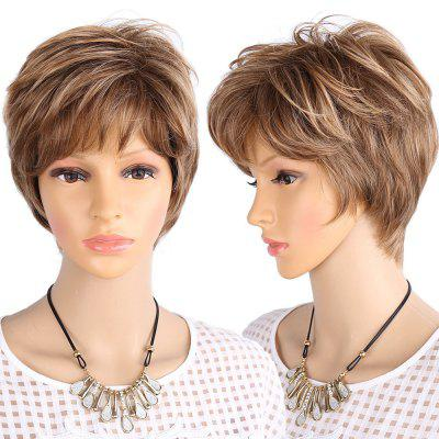 Short Side Bang Layered Fluffy Colormix Straight Synthetic Wig