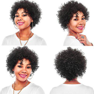 Inclined Bang Short Bouffant Curly Synthetic Wig