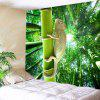 Bamboo Forest Chameleon Wall Art Tapestry - GREEN