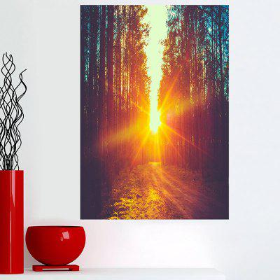 Nature Sunset Forest Canvas Wall Art Print