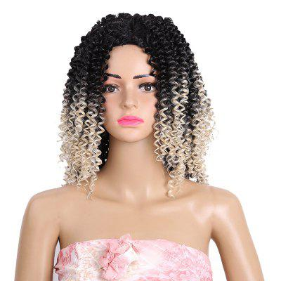 Medium Side Bang Colormix Kinky Curly Synthetic Wig
