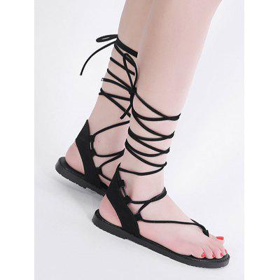Lace Up Flat Heel Thong SandalsWomens Sandals<br>Lace Up Flat Heel Thong Sandals<br><br>Closure Type: Lace-Up<br>Gender: For Women<br>Heel Height: 1.5CM<br>Heel Height Range: Flat(0-0.5)<br>Heel Type: Flat Heel<br>Occasion: Casual<br>Package Contents: 1 x Sandals (pair)<br>Pattern Type: Cross<br>Sandals Style: Gladiator<br>Shoe Width: Medium(B/M)<br>Style: Leisure<br>Upper Material: Suede<br>Weight: 1.0800kg