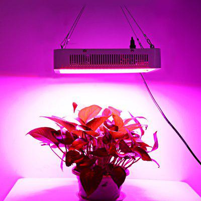 400W ( True 140W ) Full Spectrum LED Plant Grow Light Indoor Plant