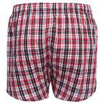 Plaid Pure Cotton Elastic Ultrathin Shorts deal