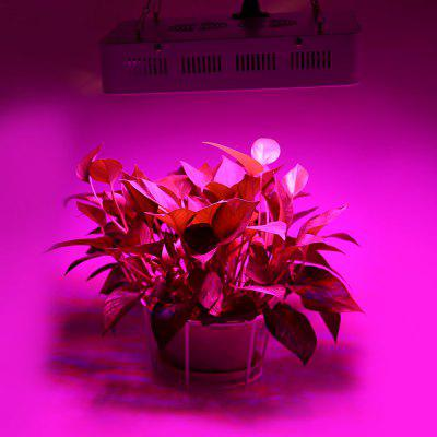300W ( True 100W ) LED Plant Grow Light
