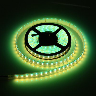 5M Double Row 5050 SMD 600 RGB White Strip Light