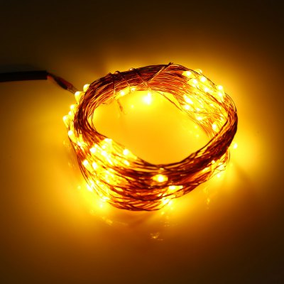 DC 6V 10M 100 LEDs Copper String Light