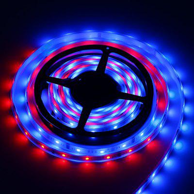 5M 5050 IC 6803 LED RGB Tube Strip Light
