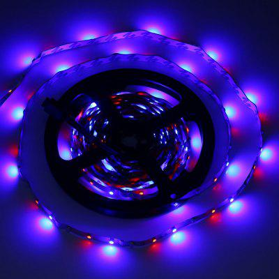 5M 300 LEDs SMD 3528 Flexible Colorful Strip Light