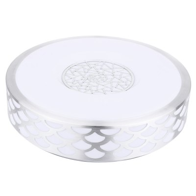 Sector 30 LEDs Ceiling Light