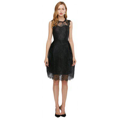 See-through A-line Pure Color Women Lace Dress