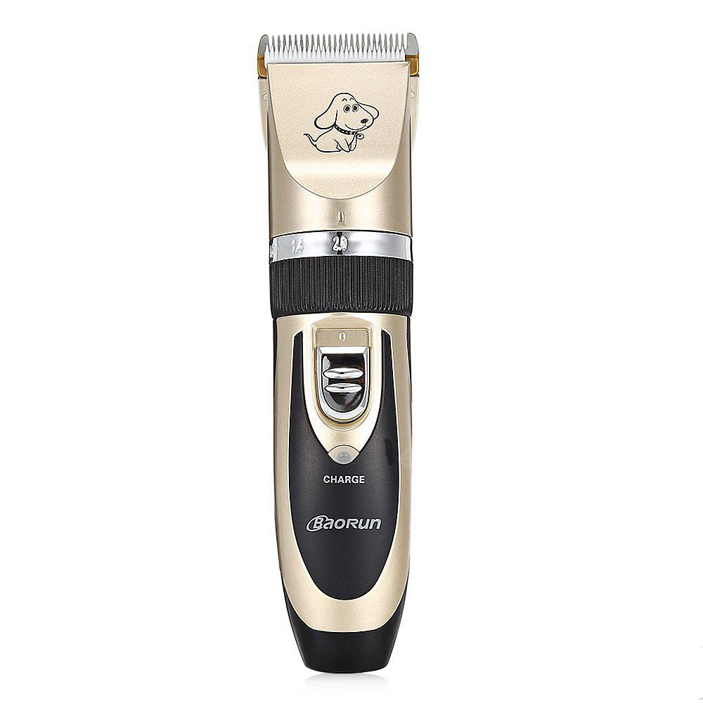 Professionnel Rechargeable Pet Hair Clipper with Grooming Kit