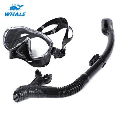 WHALE Professional Diving Mask Snorkel Set