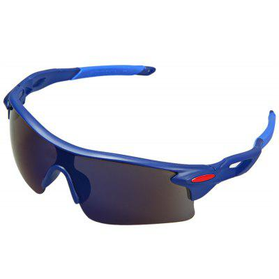 Buy BLUE ROBESBON Bicycle Glasses PC Lens Eyewear Eye Protector for Driving Hiking Cycling for $2.13 in GearBest store