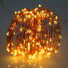 5M 50 LEDs Copper Wire Fairy String Light AA Battery - WARM WHITE LIGHT