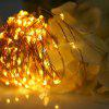 1M 10 LEDs Copper Wire Fairy String Light AA Battery - WARM WHITE LIGHT