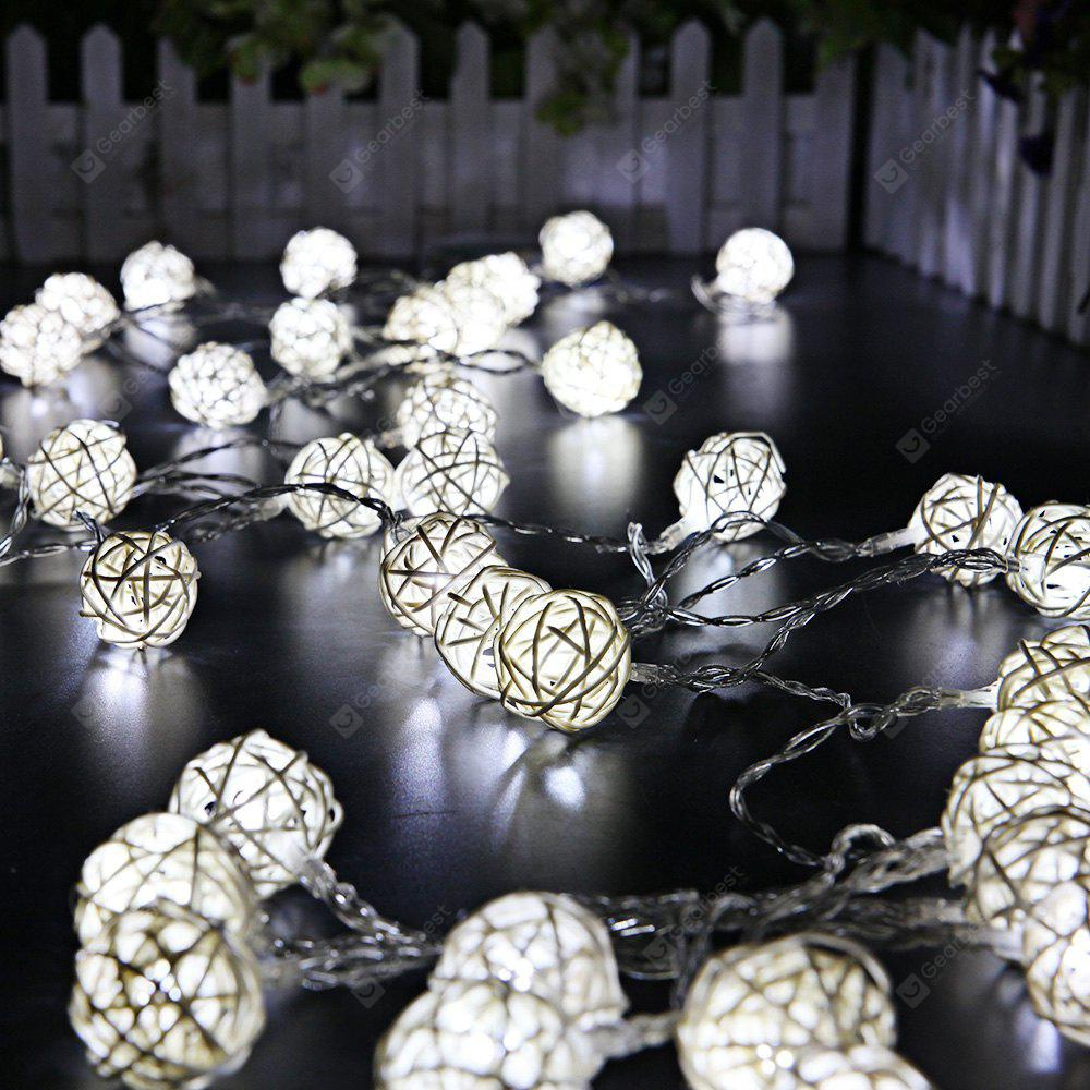 2.5m 20 LEDs Rattan Ball Fairy String Lights COOL WHITE LIGHT