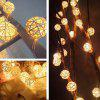 2.5m 20 LEDs Rattan Ball Fairy String Lights - WARM WHITE LIGHT