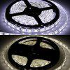 BFL - 5050 - 60LED 5m 300 LEDs RGB Flat LED Strip Light - WHITE LIGHT
