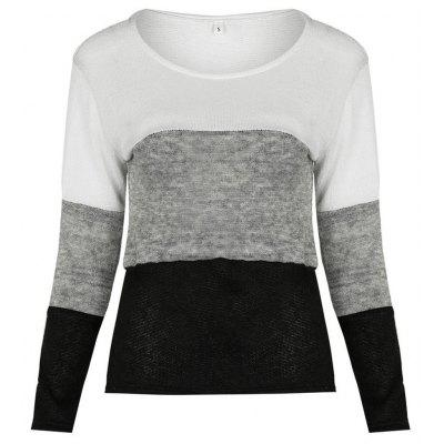 Trendy Round Collar Long Sleeve Women T-shirt