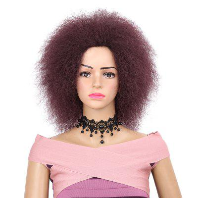 Women Hair Synthetic Fiber Short Kinky Fluffy Afro Wig