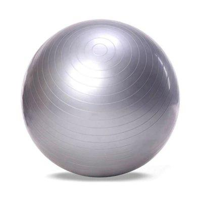 Outlife 65cm PVC Gym Exercise Yoga Ball