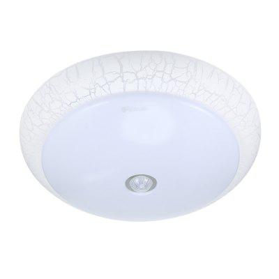 YANKON LED Ceiling Light